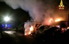 Stalla – fienile in fiamme: morti animali e materiali distrutti.